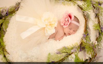 Newborn Portraits @ Artsy Artichoke Haverhill Studio